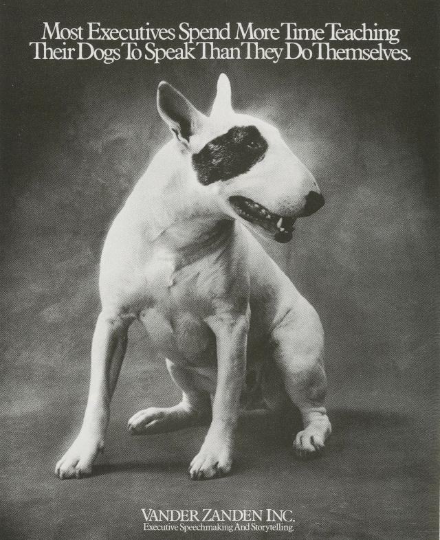 Fallon McElligott Vander 'Dog'1-01