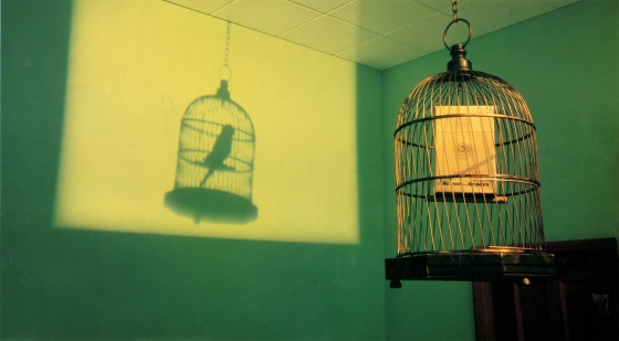 B&H Surreal 'Birdcage'-01