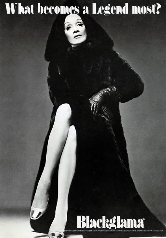 Blackgamma ad - 1969 marlene dietrich