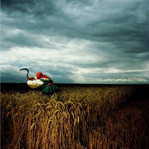 Brian Griffin - Depeche Mode, Wheat