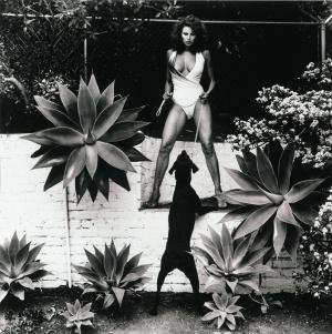 Helmut Newton 'Raquel Welch'