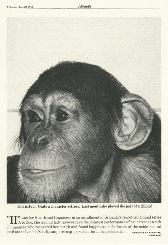 PKL2; Granada 'Monkey'-01