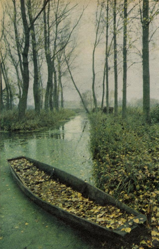 Robert Freson, 'Boat & Leaves'-01