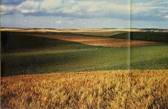 Robert Freson, 'Farm Fields'-01
