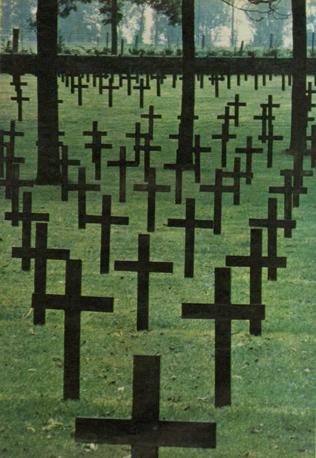 Robert Freson, 'Field of Crosses'-01