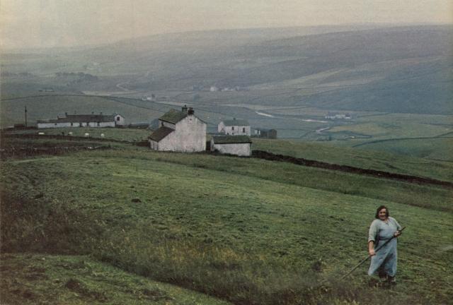 Robert Freson, 'Woman In Field'-01