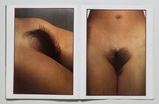 Art Kane, Viva 'Hairstyles 3'