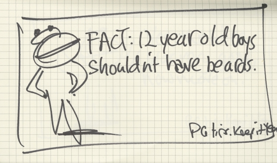 PG tips 'FACT' rough-01