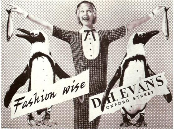 'Penguins' D. H. Evans, Arpad Elfer, CPV.jpg
